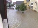 Dokumentation zum Hochwasser... (Foto: Ch. Pieger)